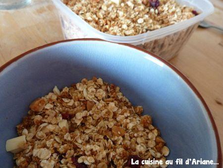 granola coco cranberries2pic
