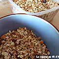 Granola coco-cranberries-chocolat blanc