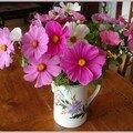 Jachère florale