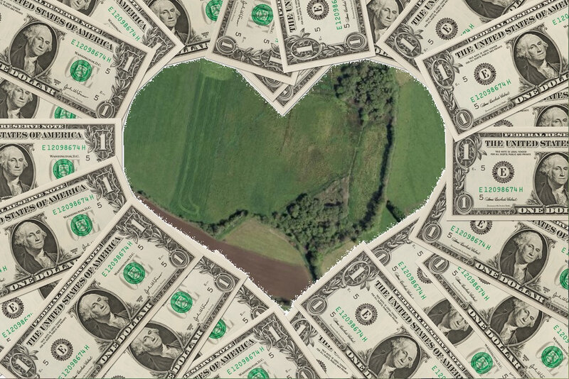 love money and country