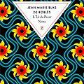 L'ile du point némo de jean-marie blas de roblès : un roman