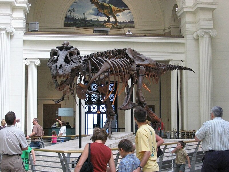 1024px-Chicago_Illinois_-_Sue_the_TRex-_Field_Museum2