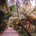la digue_ parc source d'argent_045