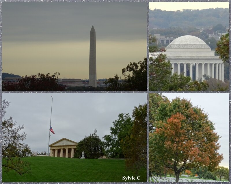 Washington 201514