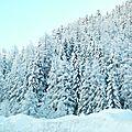 Tricoter la neige