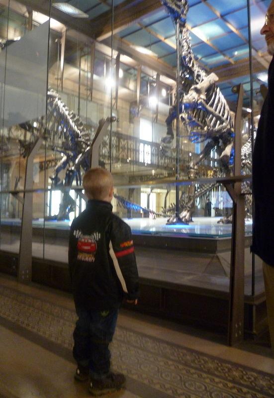 Au Musée des Sciences Naturelles - novembre 2010