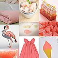 Grapefruit pink obsession
