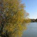 automne045