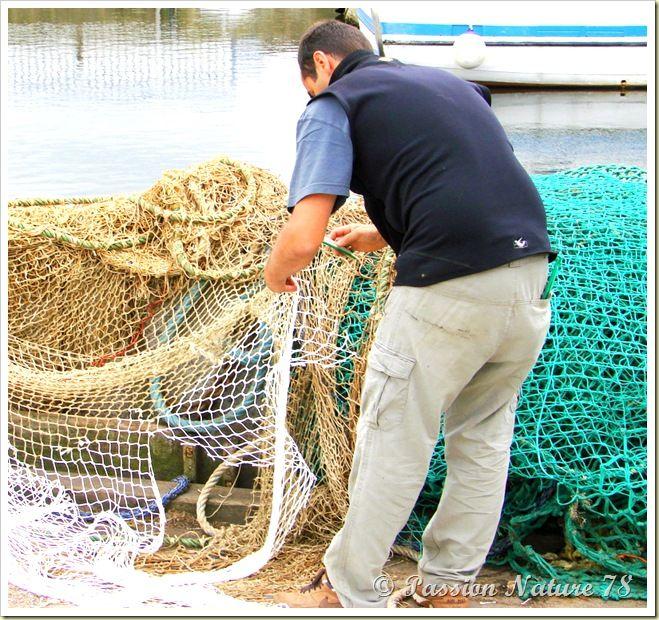 Retour de pêche (14)