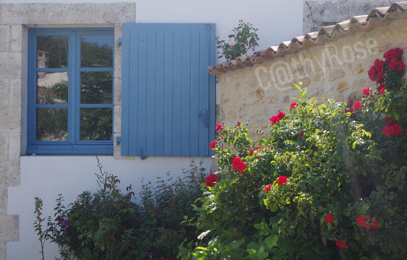 && Talmont sur Gironde (24)