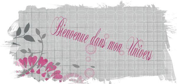 Realisation_du_06-01-13