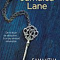 Dublin street t3 : jamaica lane - samantha young