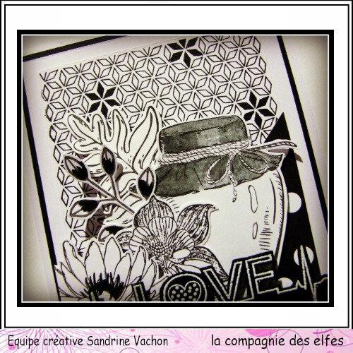 Sandrine VACHON carte N&B dt LCDE (2)