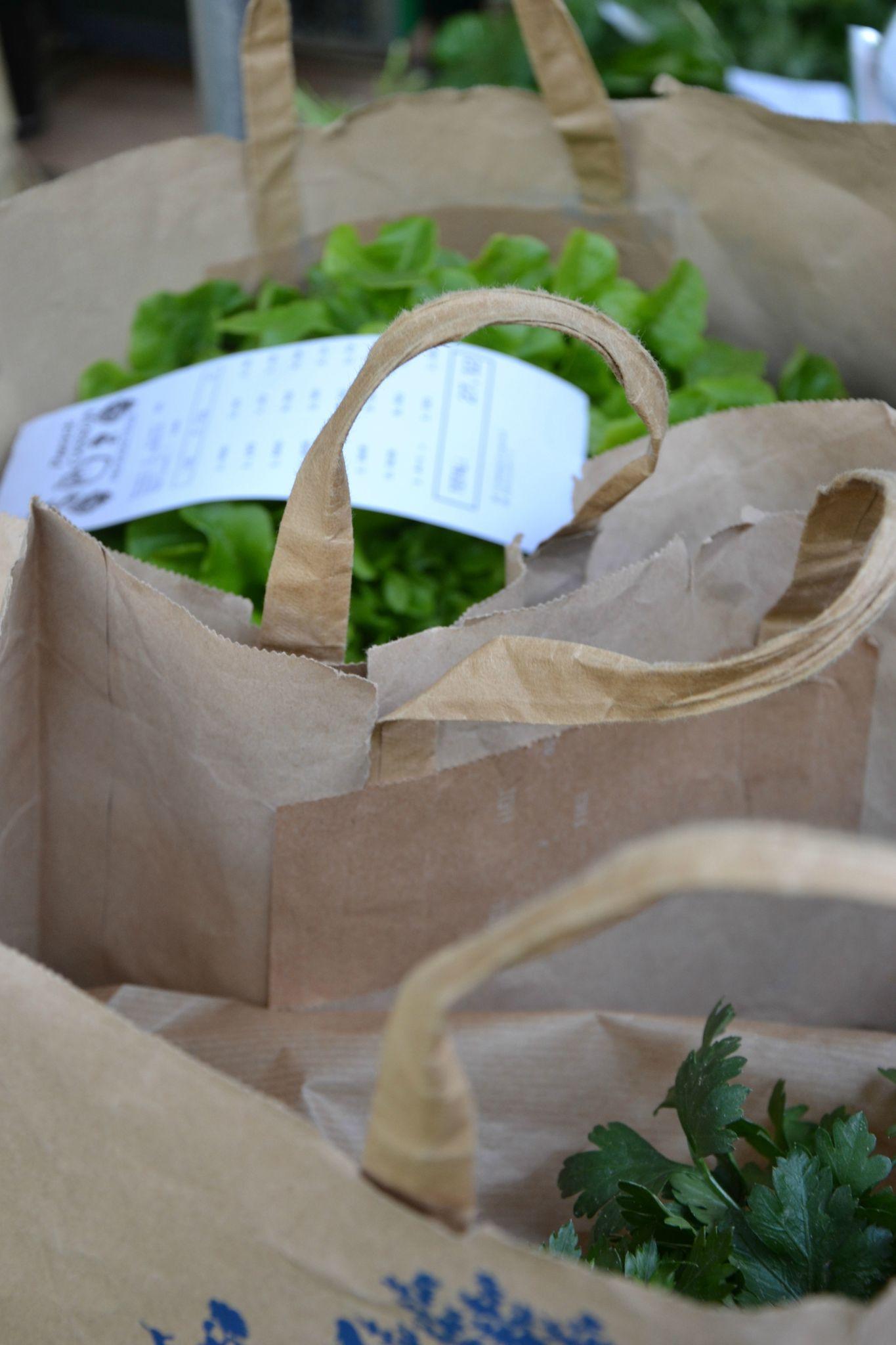 sacs autobiodégradables