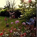Windows-Live-Writer/jardin_D005/DSCF3879_thumb