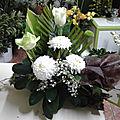 20160715_173752-1