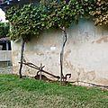 1-Musée de la Chalosse à MONTFORT 050917