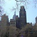 Esculape New York USA (9)