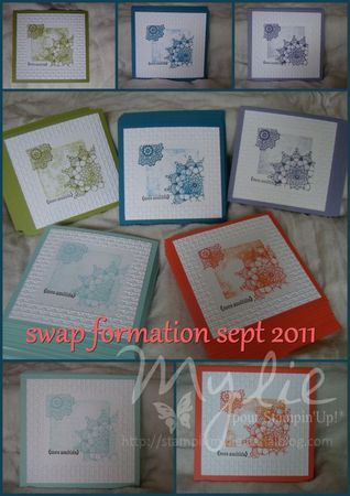 swaps formation sept 2011