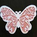 Papillon pastel...