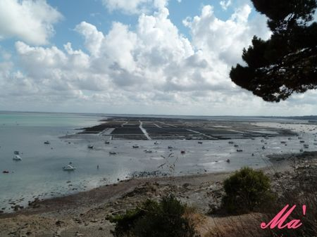 cancale_100812