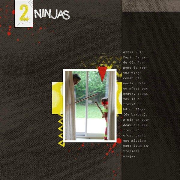 15-04 deux ninjas