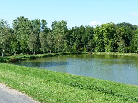 Belleville début août 2011 017
