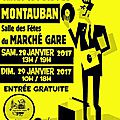 Salon disque montauban 28 et 29 janvier 2017 - convention collection vinyles et cd
