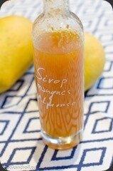 Sirop-mangues-5