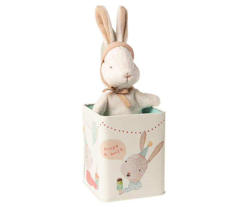 Petit lapin dans sa boîte 2O euros