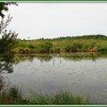 Lac 29061526