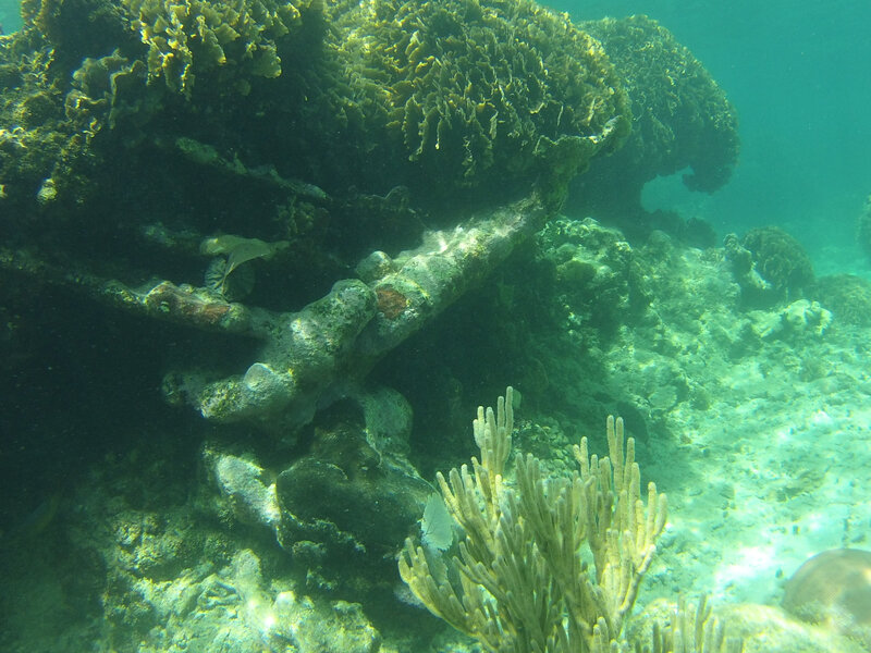 fond sous marin Utila (5)