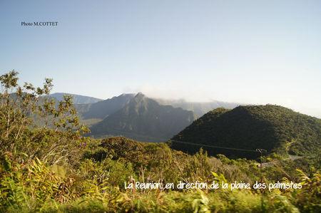 DSC04198_En_direction_de_la_Plaine_des_palmistes_MOD_