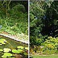 Open-Live-Writer/Vert_868A/jardins 2_thumb
