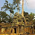 Temple Ta Prohm, mangé par la jungle