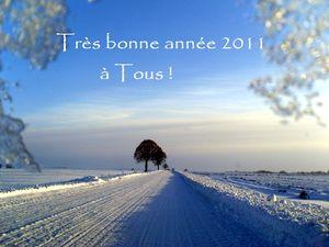 Ann_e_2011
