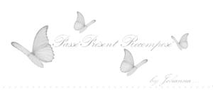 bannière papillon