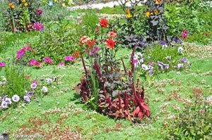 Le-jardin-bijou-176