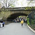 DAY 6 : Central Park