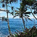 Presqu'île TAHITI INI Novembre 2017 (3)
