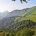 les crêtes du Layens et le Soum d'Ire (1351 mètres)