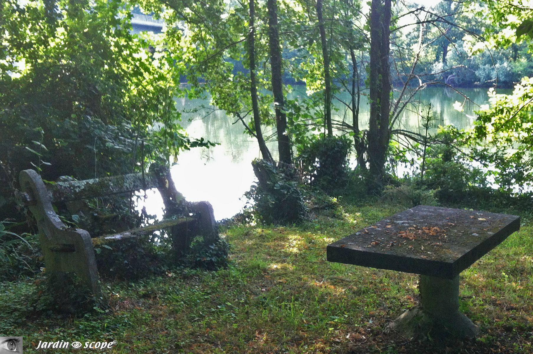 Vieux banc au bord du Loiret