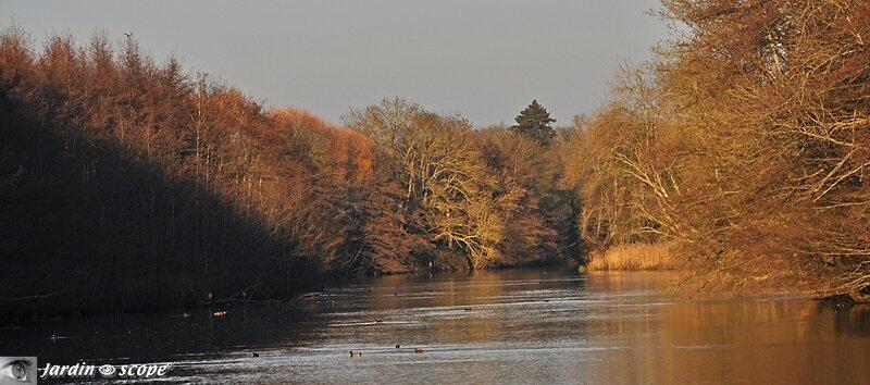 Le Loiret en habit automnal