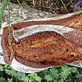 Les bretons dans la tourmente de la grande guerre et un pain de la liberté au blé noir, au jus de pomme et aux graines de lin
