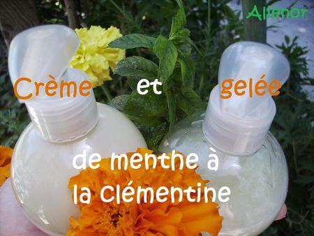 Duo_cr_me_et_gel_e_de_menthe___la_cm_mentine_01
