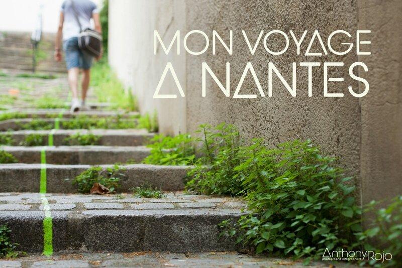 ©_Anthony_Rojo_Mon_voyage_a_Nantes-Couverture_Ze_Blog