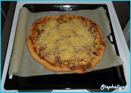 Pizza_poireaux_coppa____16_f_vrier_2012