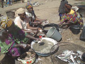 les cuisinières Marché du Port MOPTI Mali