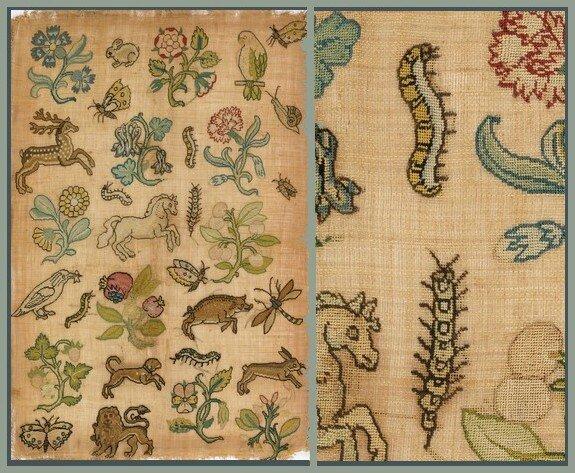 Chenilles Caterpillar Couleur Tourterelle 01