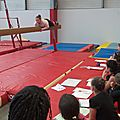 formation juges gymnastique